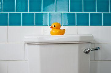 azulejos del baño