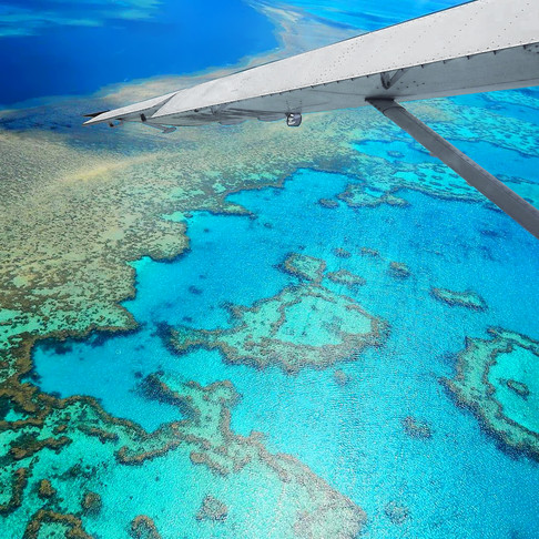 The Great Barrier Reef just before the bleaching began