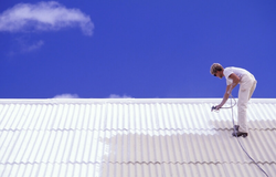 roof-painting-cost