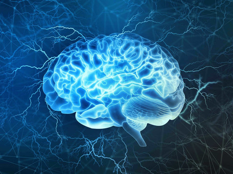 Mind Muscle Connection Beginnings