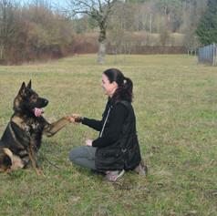 Auch Polizeihunde fühlen sich bei uns wohl