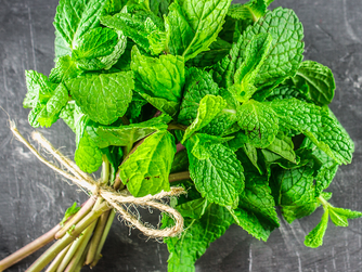 4 benefits of peppermint that you didn't know existed.