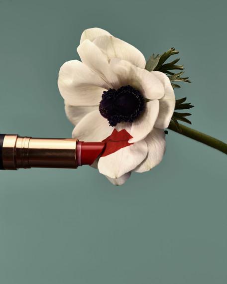 20200314_Flowers_Shot_03_AnemoneLips_143