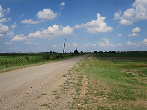 The road into Dyess