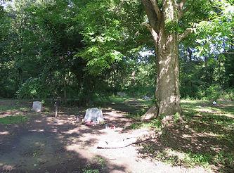 Rober Johnson's grave