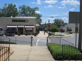 Greenville Georgia