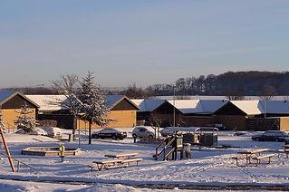 sne afdeling.jpg