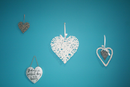 Blue Jay Room Decorations
