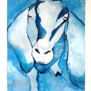 Blue Johnny (VAS)