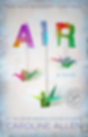 air_cv_HR2.jpg