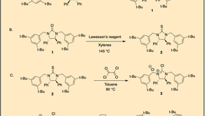 Preparation of Asymmetric PTC, tBu-Bisguaninidium Catalyst