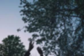 Screen Shot 2018-06-21 at 12.18.01 PM.pn