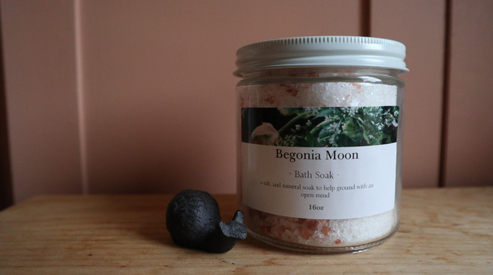 Herbal+ Salt+ Mineral Bath Soak $20.00