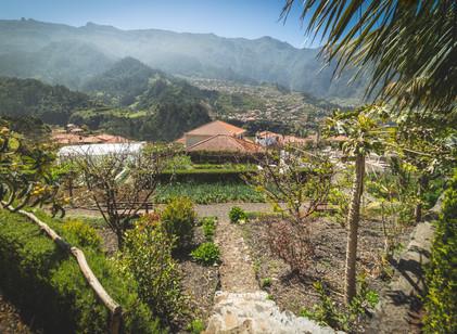 Jardim/Horta