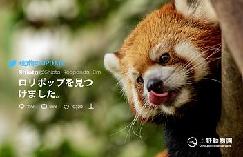 上野動物園_01.png