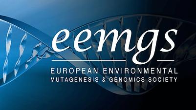 EEMGS-985dee94-13d60d0d.png