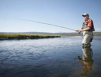 Fishing.webp