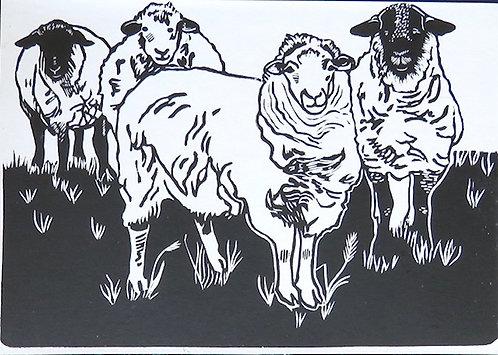 "The Flock, 1/20 - 8x6"""