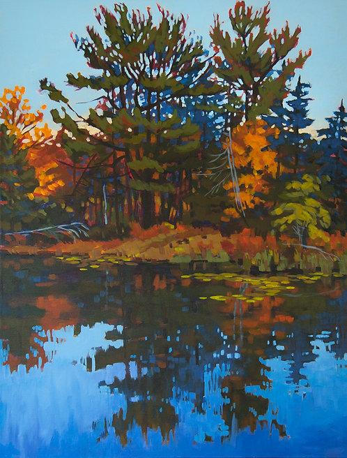 Jebb's Creek in October 19-04