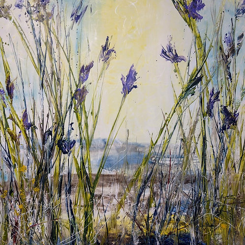 Where the Wild Iris Grow #8