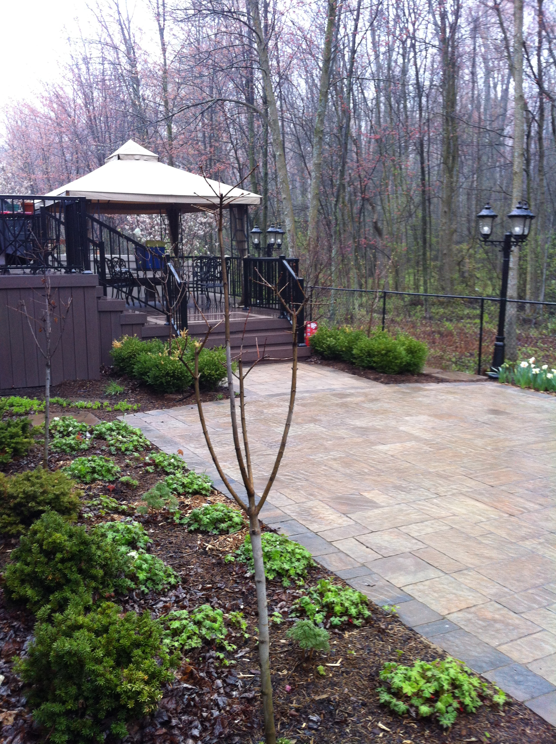 Exterior Roofed Patio