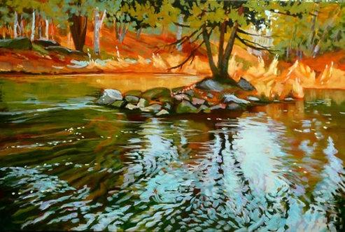 Black Creek at Murphy's Point #2