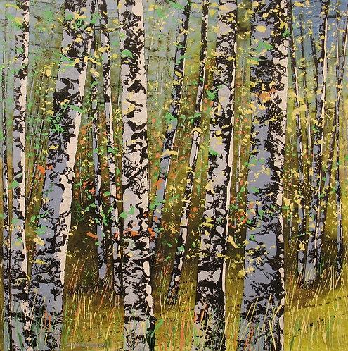 Treescape #09517