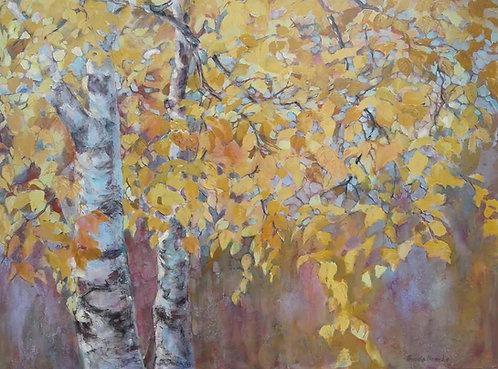 """Autumn Birch-48x36"""""""