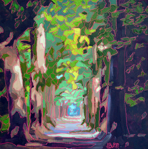 Canopy Journey