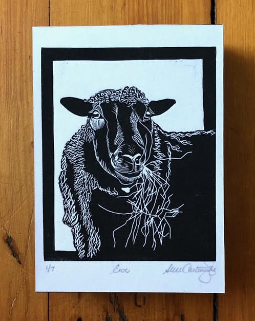 Ewe, Edition #1 out of 7, 5x7""