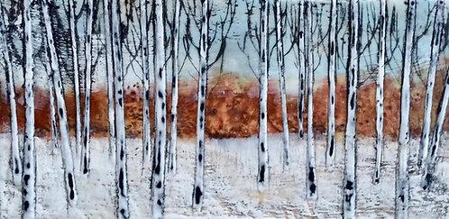 Twenty-two Birches