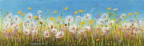 Wildflowers 16318