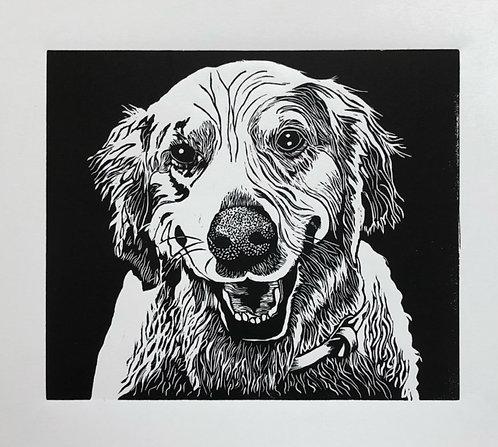 Ginger, (Golden Retriever Commission) Artist Proof