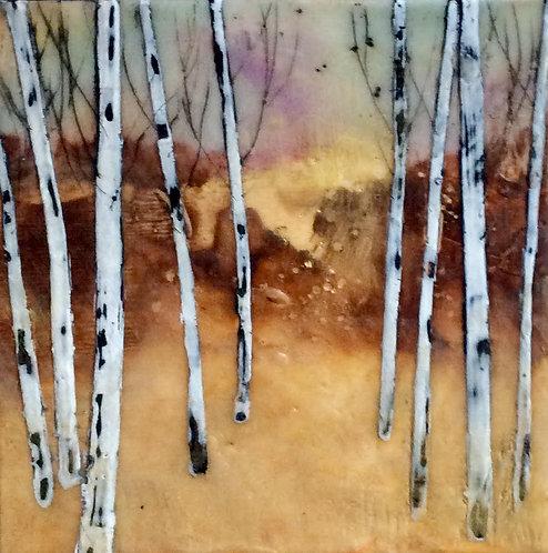 Nine Birches Standing
