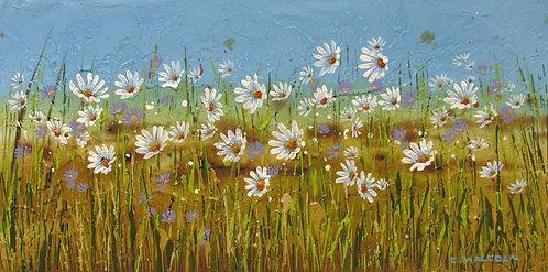 Wildflowers #18717