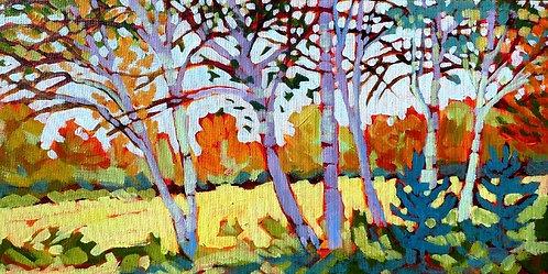 Birches - Murphy's Point
