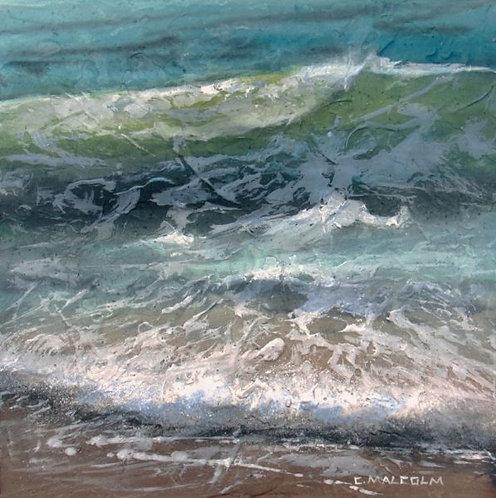 Shoreline Study #18117