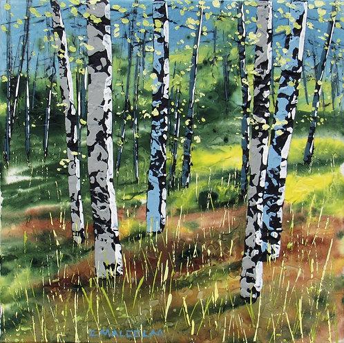 Treescape 11420