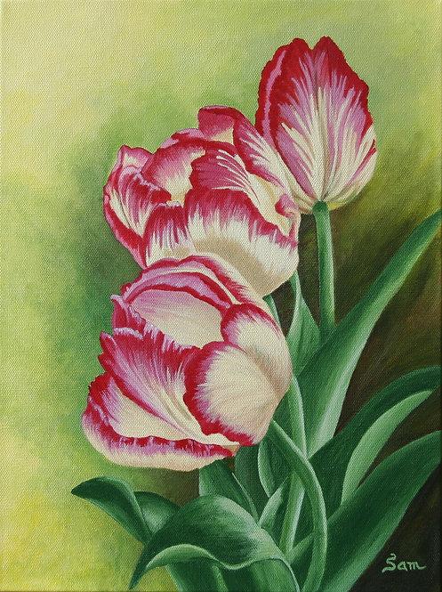 """3 Tulips-12x16"""""""