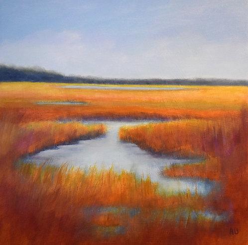 """Kinburn Wetlands- 16x16"""""""