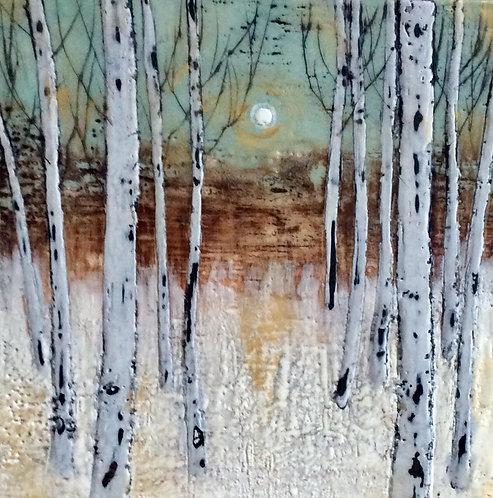 Eleven Birches