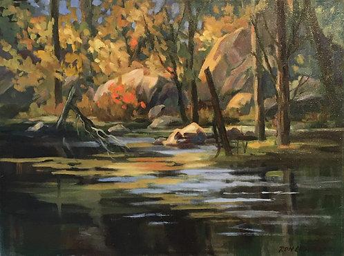October Swamp, 1988