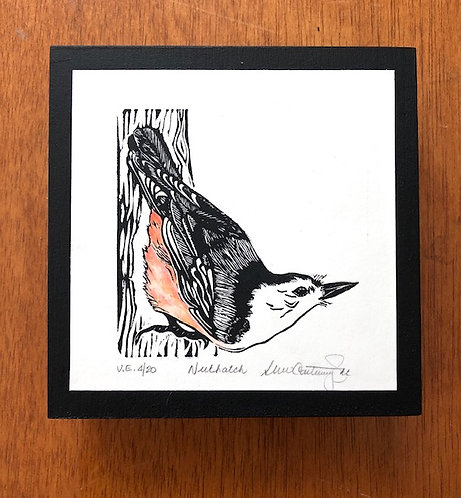 Nuthatch, Variable Edition #4 of 20