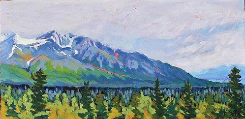 Chilkat Valley, Alaska 18-95