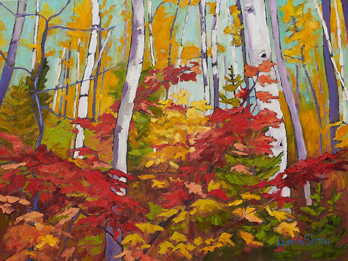 Birch Trees and Fall Leaves, Col.2