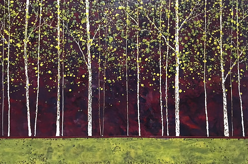 Forest Edge 19115