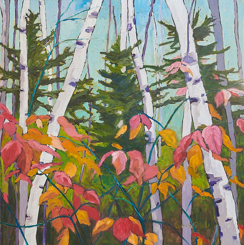 Birch Trees and Fall Leaves col.7