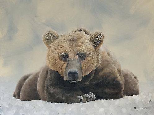 Bear Pose Commission