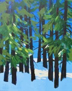 Sunsplash Forest