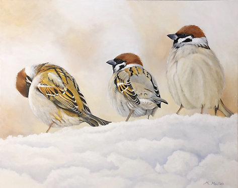 3 Sparrows in the Snow